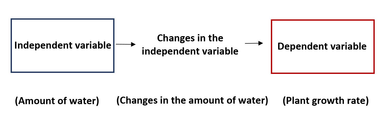 Independent vs. dependent variables