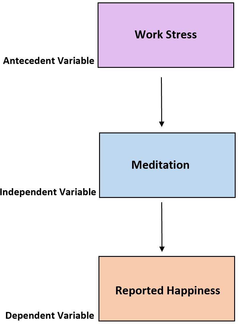 Antecedent variable in statistics