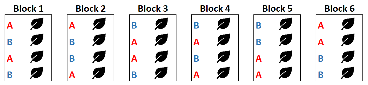 Permuted block randomization