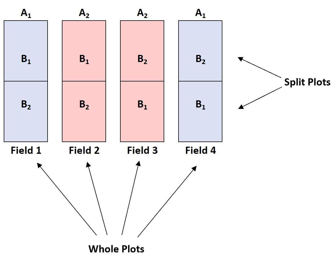 Split-plot design example