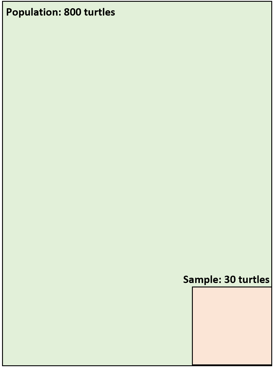 Difference between population and sample