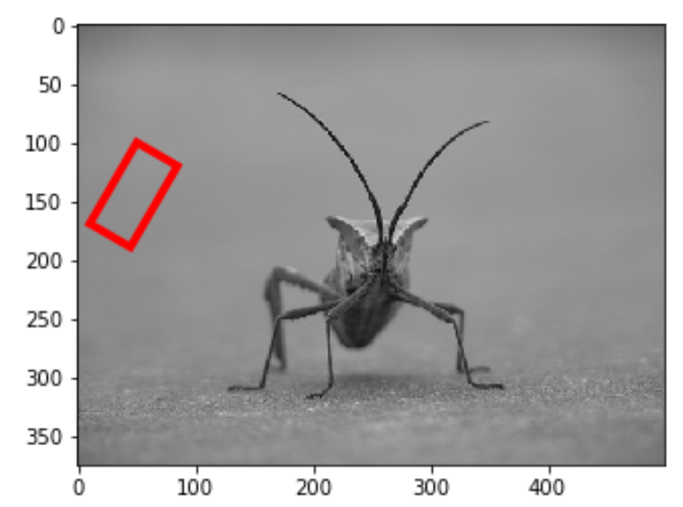 Rotated rectangle on an image in Matplotlib
